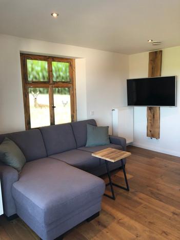 Der Wohnbereich mit ausziehbarem Schlafsofa. Liegefläche 1,25m x 1,95m