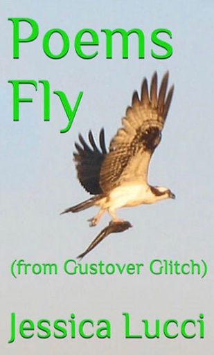 POEMS FLY (from Gustover Glitch)