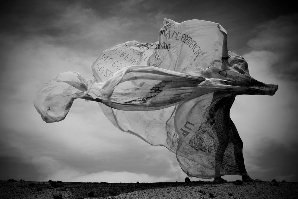 Lika Mutal Performance with veil. Paracas, Peru. feb 16 2014