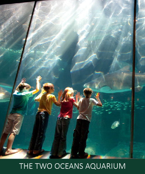 The Oceanarium.jpg