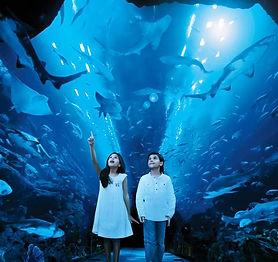 DubaiAquariumandUnderwaterZoo.jpg
