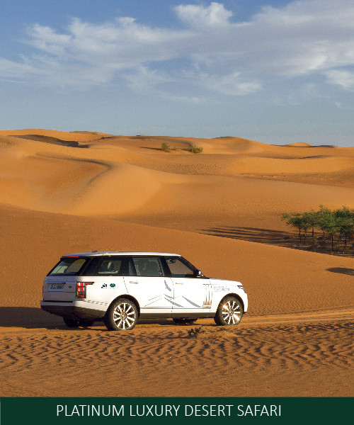 PLATINUM LUXURY DESERT SAFARI EROS AFRIC