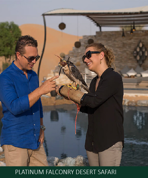 PLATINUM FALCONRY DESERT SAFARI EROS AFR
