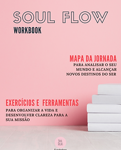 Novo_Workbook Soul Flow V28.png