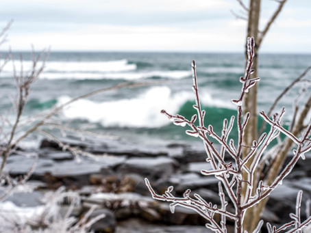 Week 9 of 52: Winter
