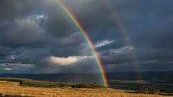 Rainbow Tak