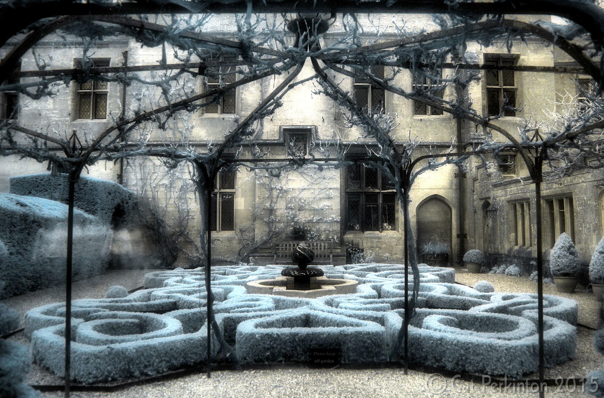 Blue Knot Garden