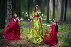 Raising Roses - Magic in the Forest