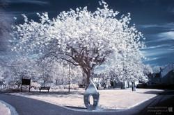 Peace Tree Blue