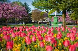 Burngreen Spring