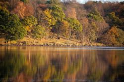 Autumn Reflections 4