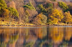 Autumn Reflections 3