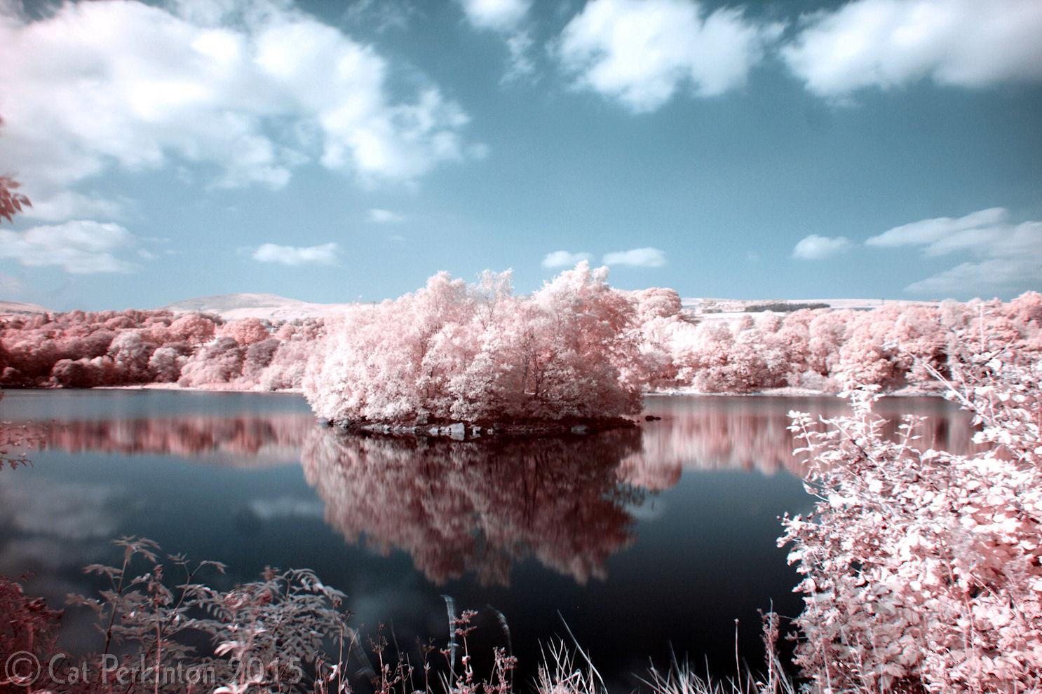 Banton Pink