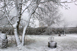 Edgeworth Snow
