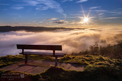 The Waiting Bench
