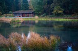 Green Pond 2