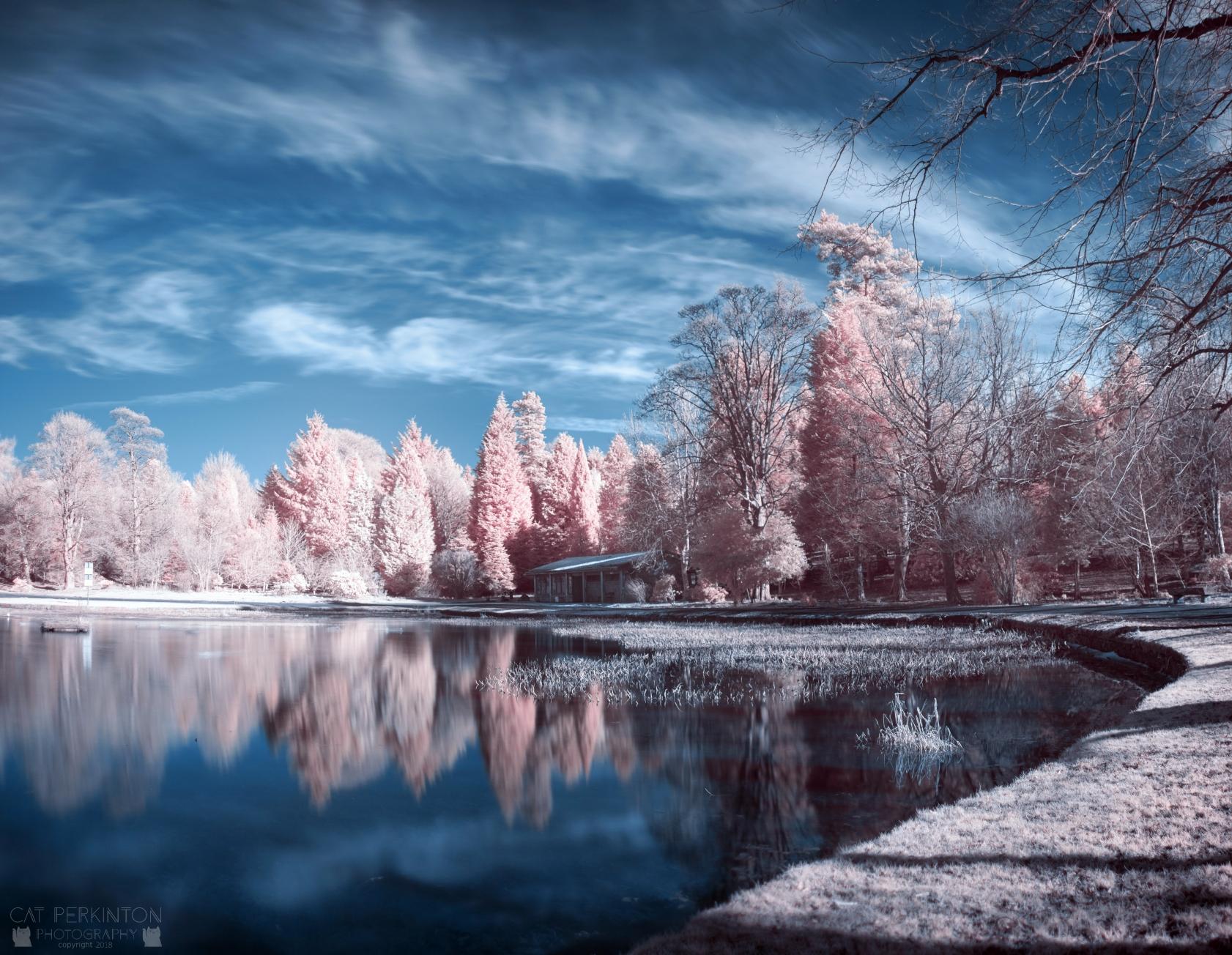 Big Sky Curling Pond Blues