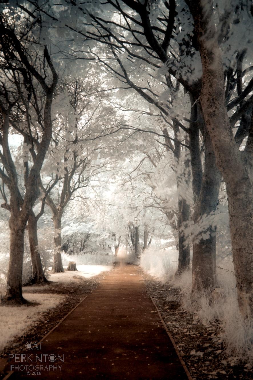 Lowline Ghost