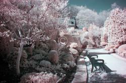 Colzium Walled Gardens