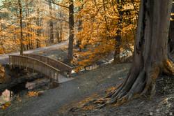 Lade Bridge Russet 2