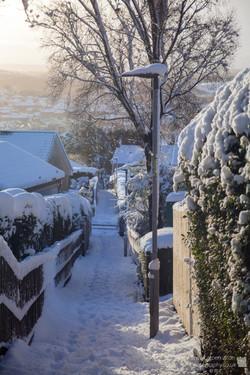 Snow Alley