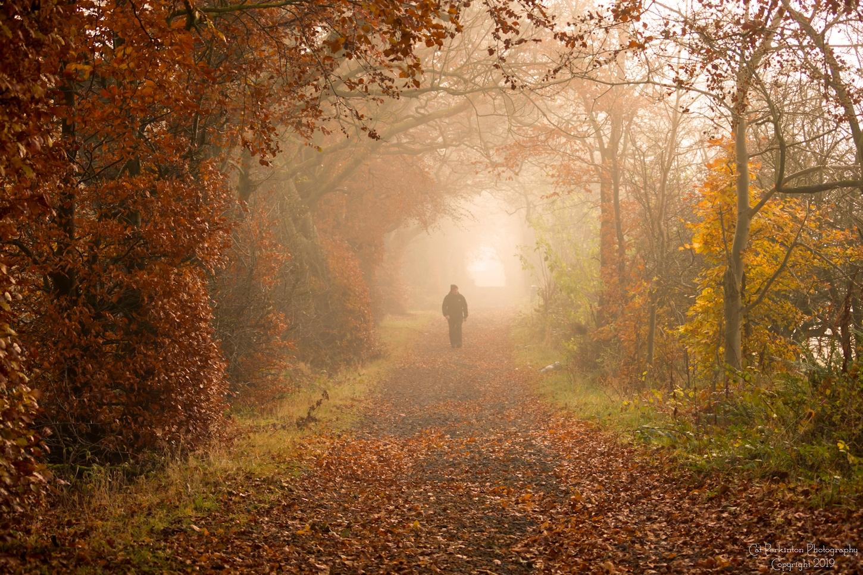 Under Autumn
