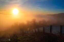 Incoming Mist