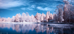 Curling Pond Panorama