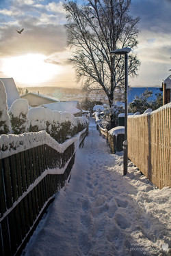 Snow Alley 3