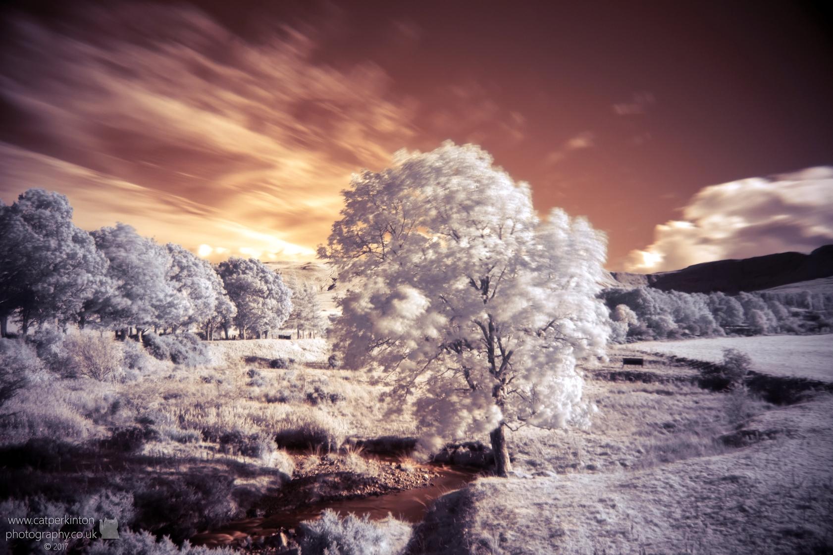 Valley Autumn
