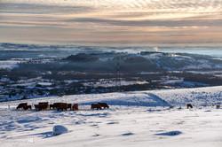 Barr Hill Snow