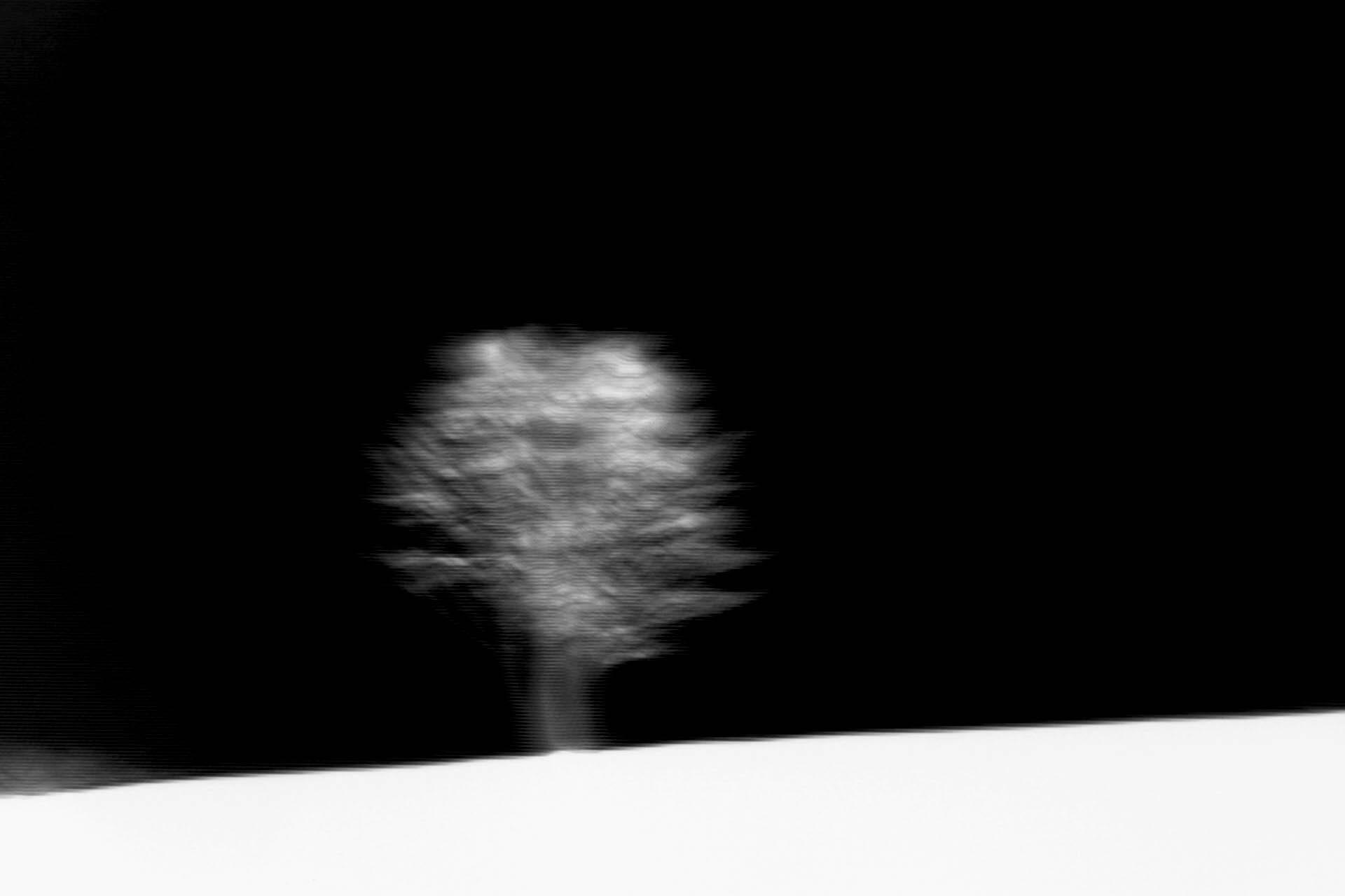 Massimo Saverio Maida © 2018