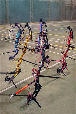 Compound bows on the line.