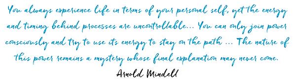 Arnold Mindel quote