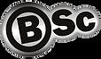 eimagination bsc logo design.png