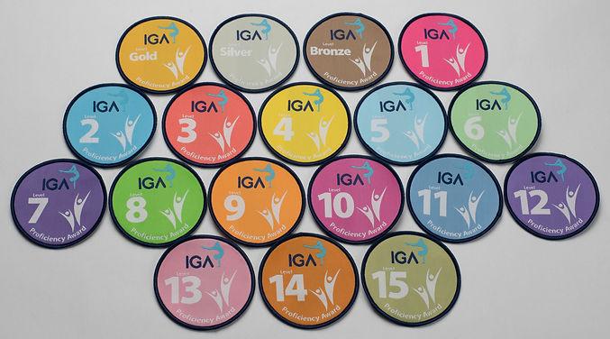 All Badges.jpg