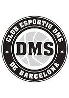 dms logo.jpg