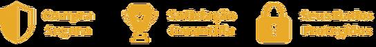 Garantia_Satisfação_Dados_Protegidos.p