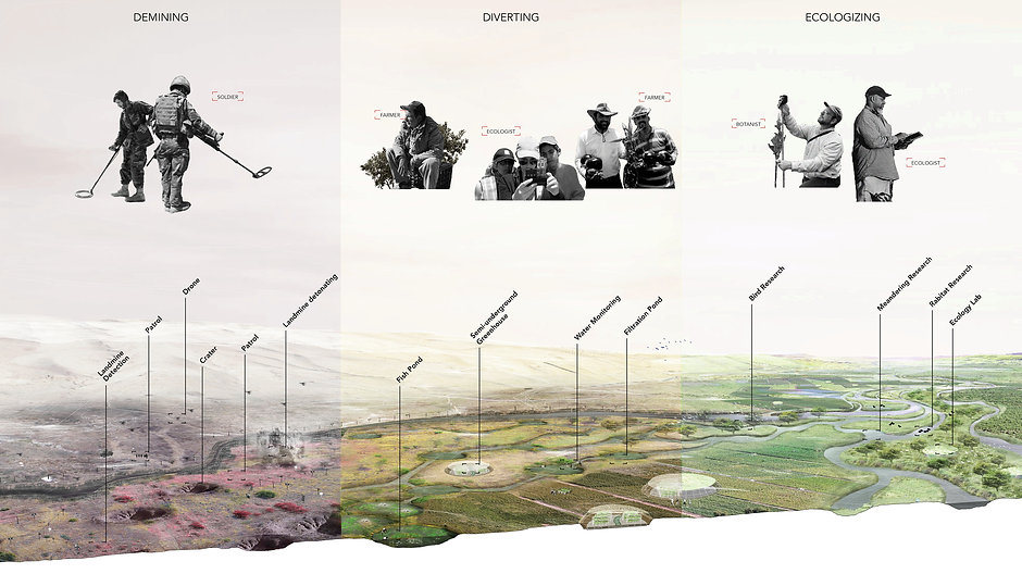 Borderfield, evolving landscape transformation