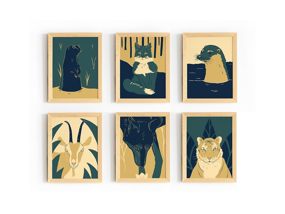 series animal prints
