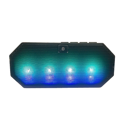 Portable Disco Speaker