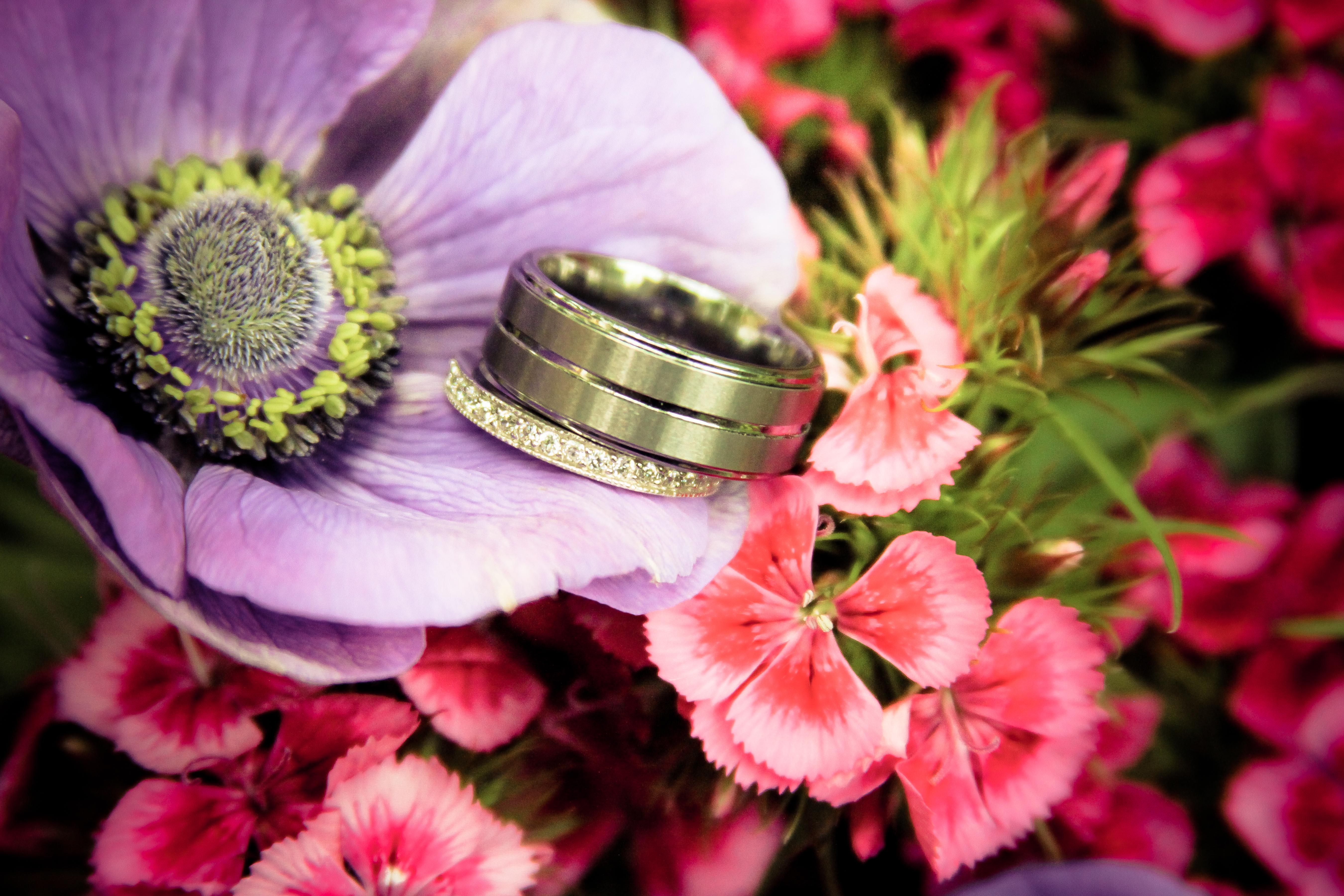 rings 6.jpg