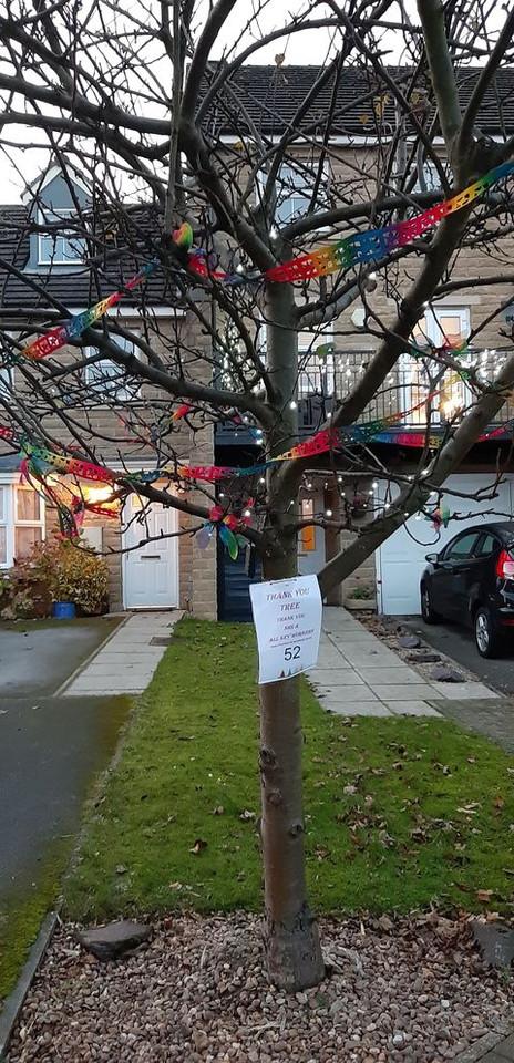 Tree 52 Thankyou NHS.jpg