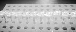 PCR tubes_edited