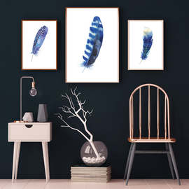 TRio of Feather - blue background.png