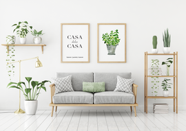 Casa and Plant - green living room.png