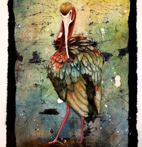 White-faced Ibis (Beauty bird series) $350 (sold)