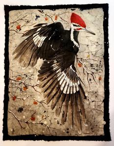 Pileated Woodpecker (Beauty Bird Series) $350 (sold)