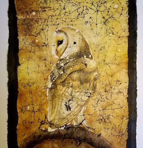 Barn owl- summer (Beauty bird series) $480