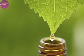 homeopatia-ventajas.jpg